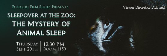 Sleepover at the Zoo